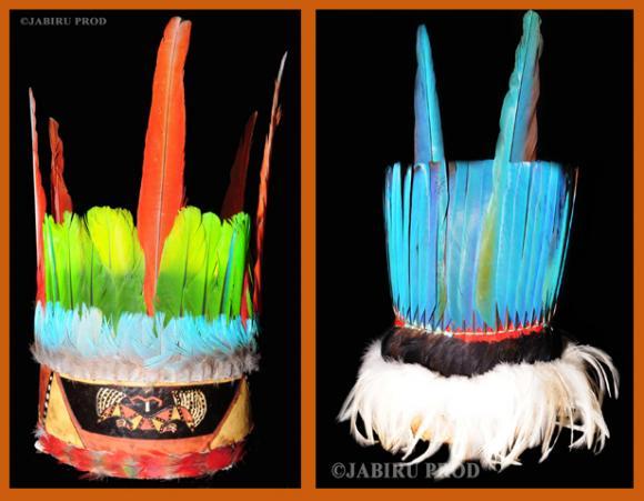 http://indiensdamazonie.cowblog.fr/images/APALAI.jpg